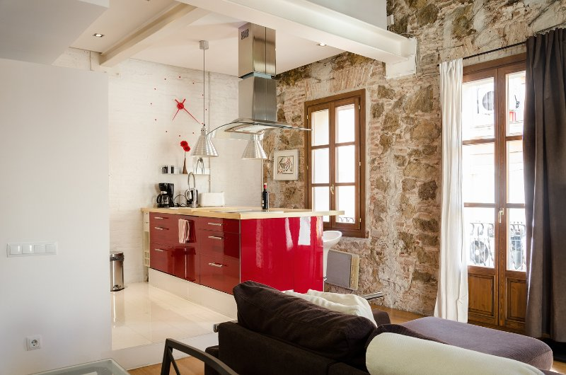 Amazing Loft in BCN Center, holiday rental in Barcelona