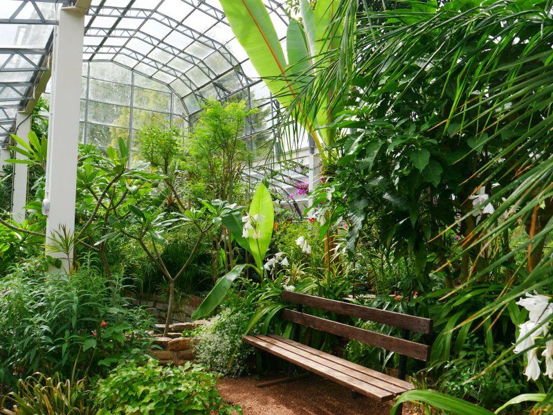 The Palm House at Torre Abbey - one of the English Riviera's attractions.