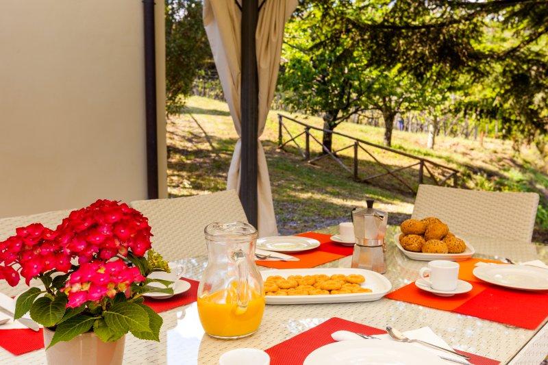 Il Tirasotto - Rustico con vista, vacation rental in San Macario in Piano