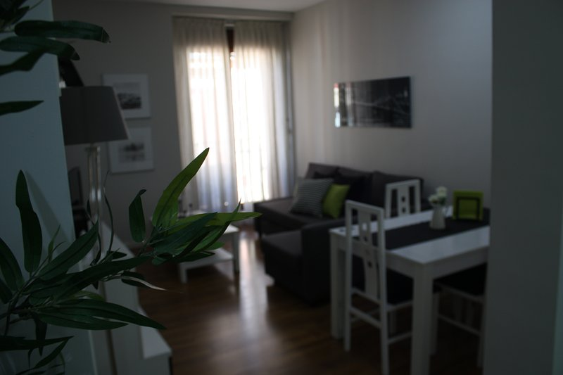 El Oso, vacation rental in Madrid