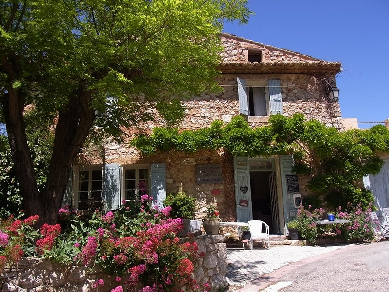 A real Provence experience, holiday rental in Saint-Hippolyte-le-Graveyron