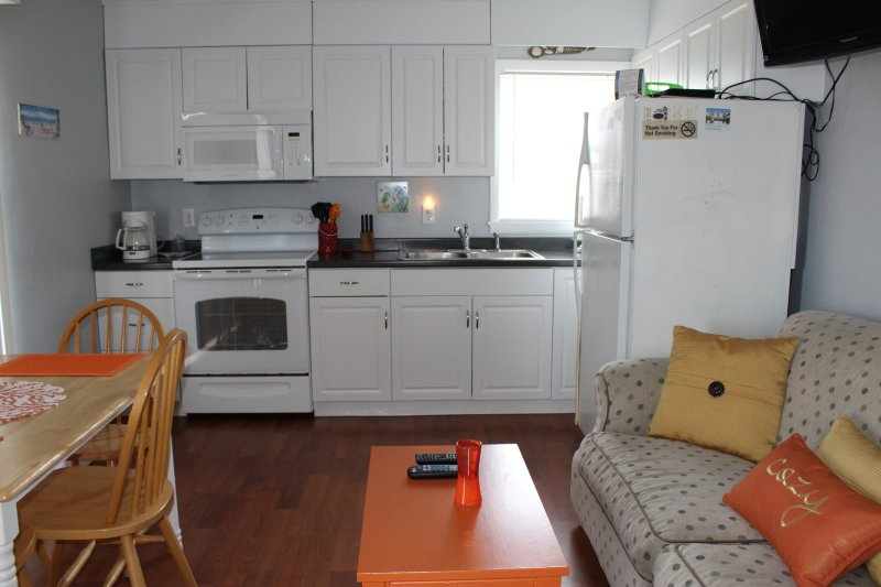 kitchen area, and some of living area. they are open to each other. 2017