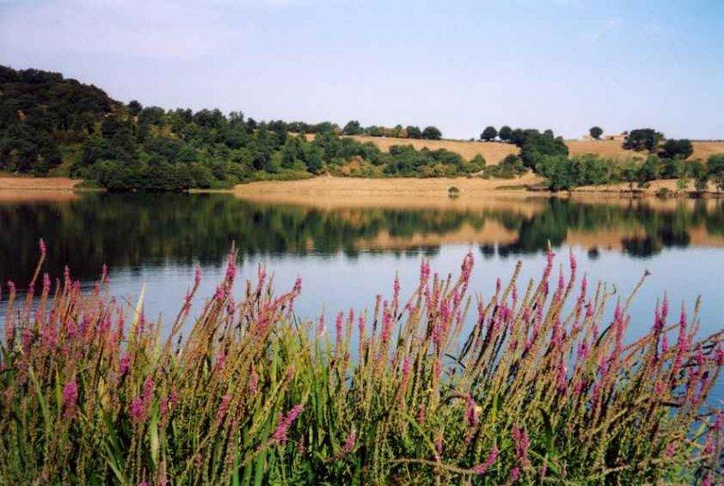 Agriturismo 'lago di Mezzano' Appartamento Francesca, vacation rental in Ischia di Castro