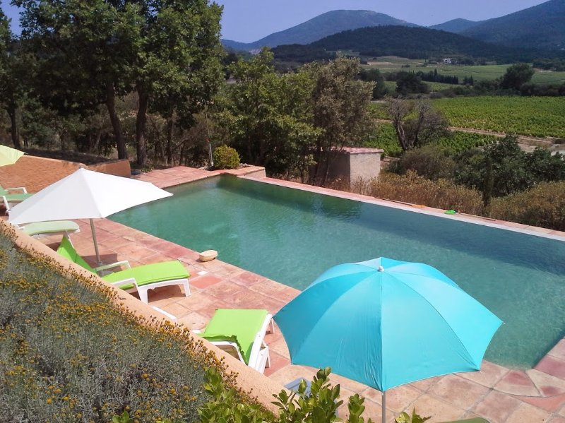 Mas des Vignes, holiday rental in Plan de la Tour