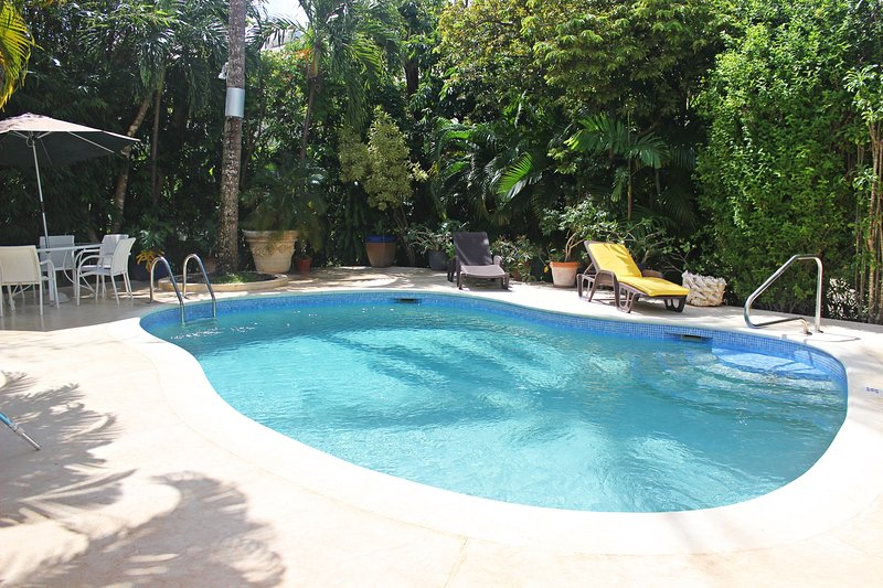 The lovely pool and pool deck set in a tropical lush garden