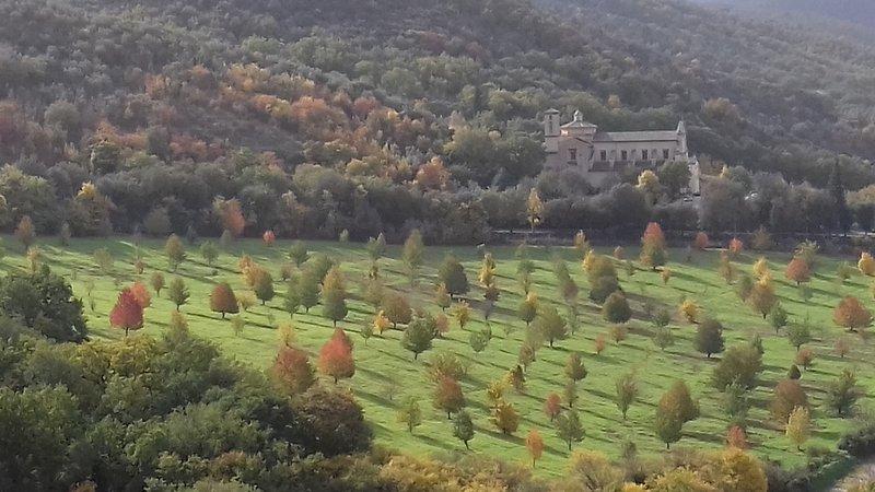 La Terrazza di Campo de' Fiori - Spoleto, vacation rental in Spoleto