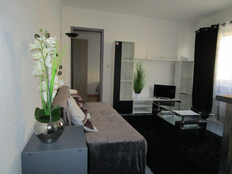 Bel appartement F2 deckerveillant près aéroport Bâle/Mulhouse, holiday rental in Huningue