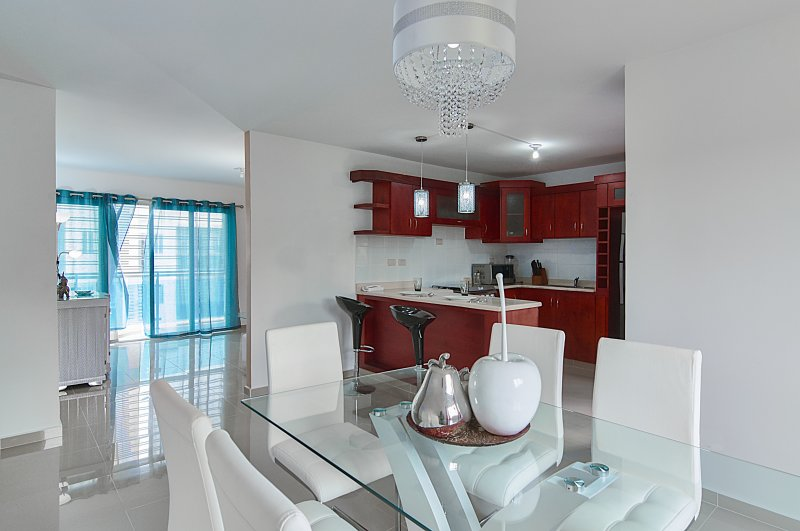 Luxury Apartment, holiday rental in Santiago Province