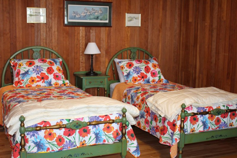 Twin Bedroom with 3 twin beds