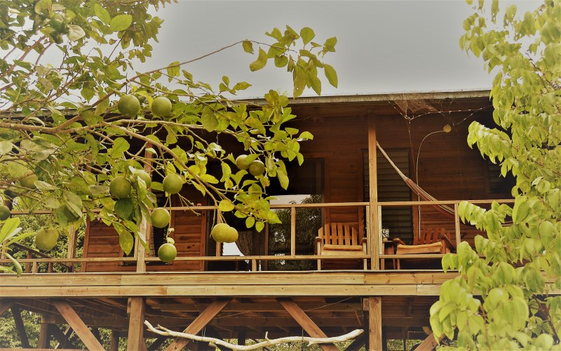 Sanpopo Cottage A  Fully Equipped Self Catering Tree Top Cabin, holiday rental in San Ignacio