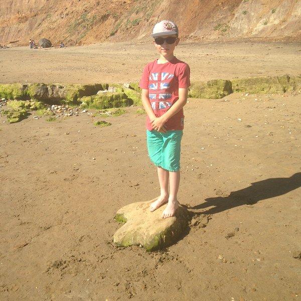 pegadas de dinossauros pé na praia Brook