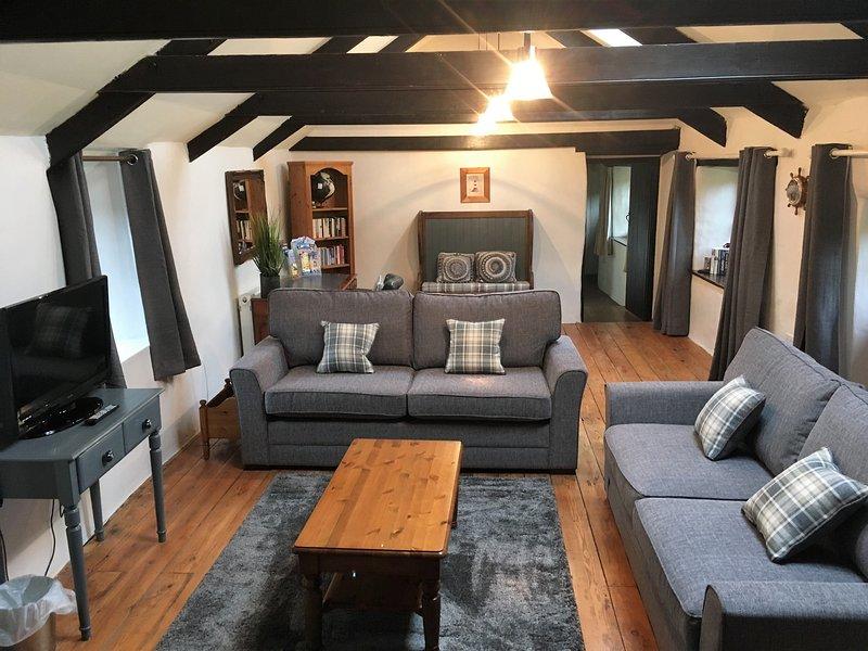 Grand salon avec plafond voûté, poutres apparentes et accès au jardin