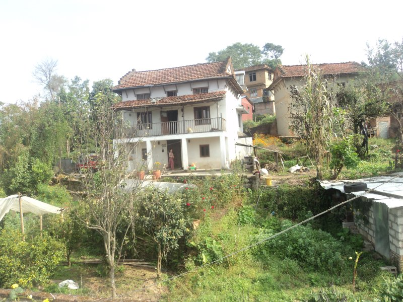 Atypical Nepali house with organic kitchen garden and fruits with mountain views, vacation rental in Panauti