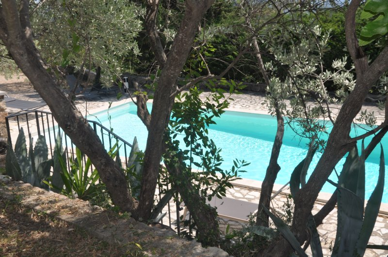 Villa with HEATED pool & AIR CON, tropical gardens laid by Parisian gardeners, holiday rental in Seillans
