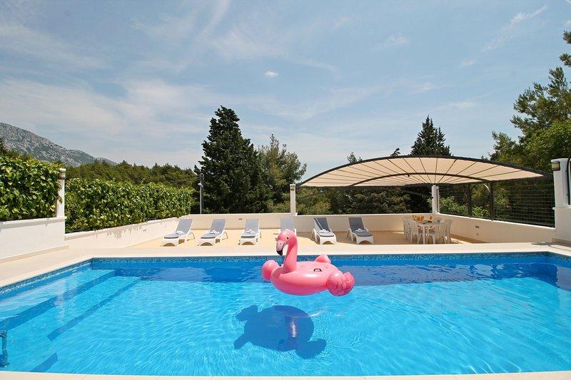 VILLA PROVOŠ and 40m2 pool with massage, sauna and sun deck area
