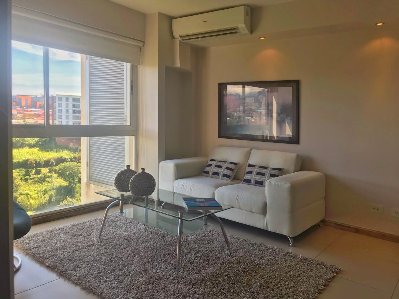 Stunishing One bedroom Apartment with view to river, location de vacances à San Jose Metro