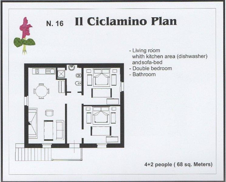 Casabianca Ciclamino_Asciano_32