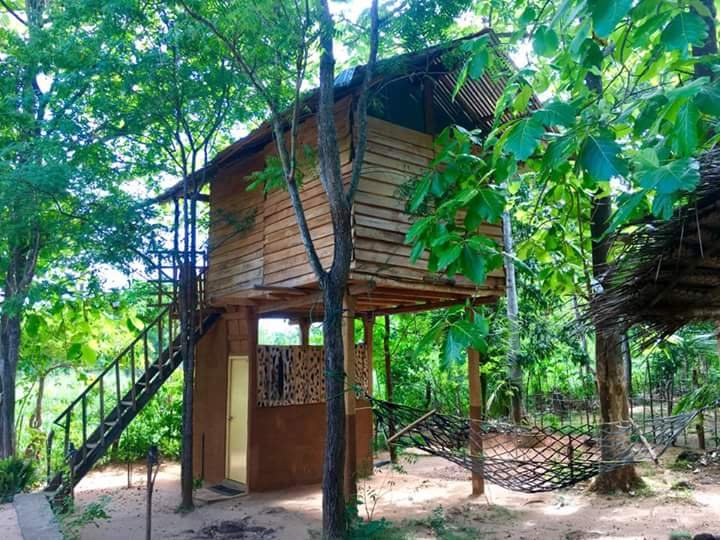 angry birds tree house, holiday rental in Kekirawa