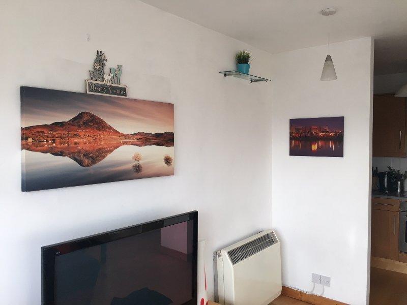CITY CENTRE | PARKING |  PHOENIX PARK | TERRACE | RIVER LIFFEY, vacation rental in Castleknock