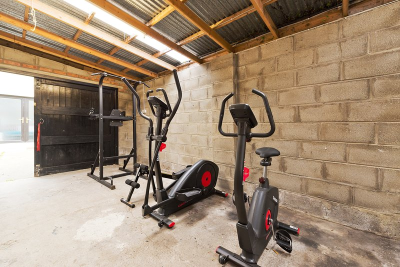 gym equipment available in private garage. power station, cross trainer and bike.