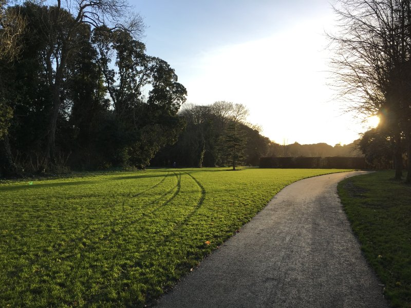 Saint Anne's Park is only 200 meters away around the corner, it's one of the best park in Dublin