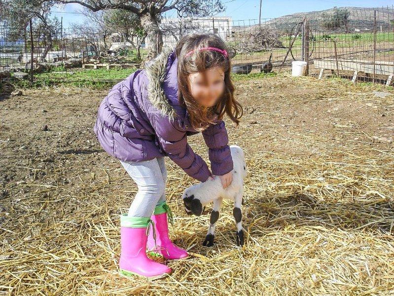 Familie Eco Farm Marmari.