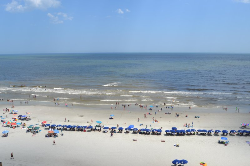 Direct oceanfront, new renovated