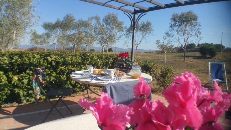 Plutone - Appartamento immerso nelle colline con Wifi e piscina, location de vacances à Castiglione del Lago