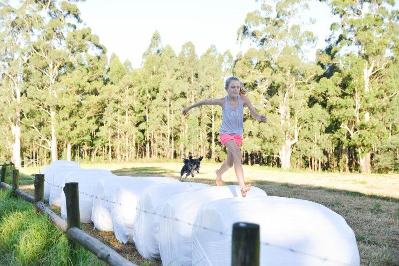 Hay bale racing