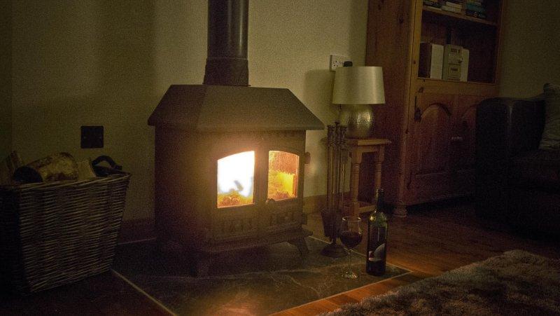 Estufa de leña cálida y acogedora