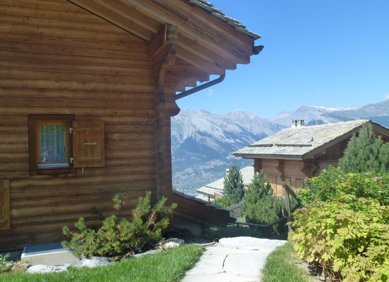Chalet with view