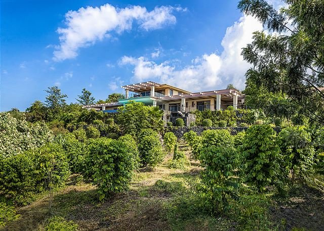 Believe it or not, this home sits on a 3 acre parcel, full of Co