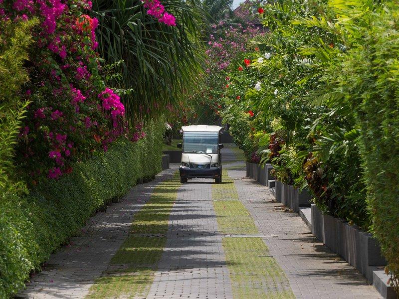 Le Layar - Boulevard