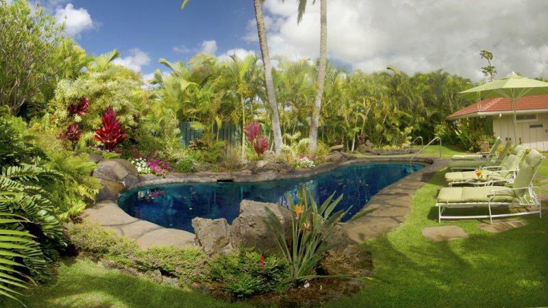 Sua própria piscina de água salgada estilo lagoa com cascata