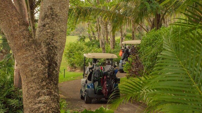 Los carros de golf en la vegetación tropical que rodea el curso