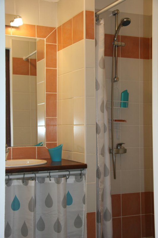 En suite room South Blue: shower and 1 sink