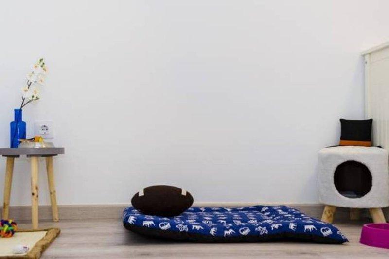 Apartamento pet-friendly con todos los accesorios necesarios para su mascota.