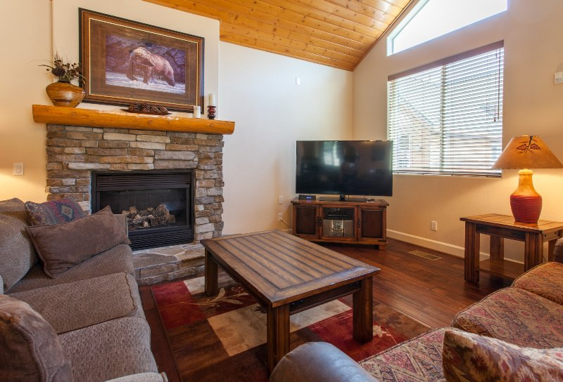 Living room with Flat screen TV, Gas Fireplace, and Queen sofa sleeper