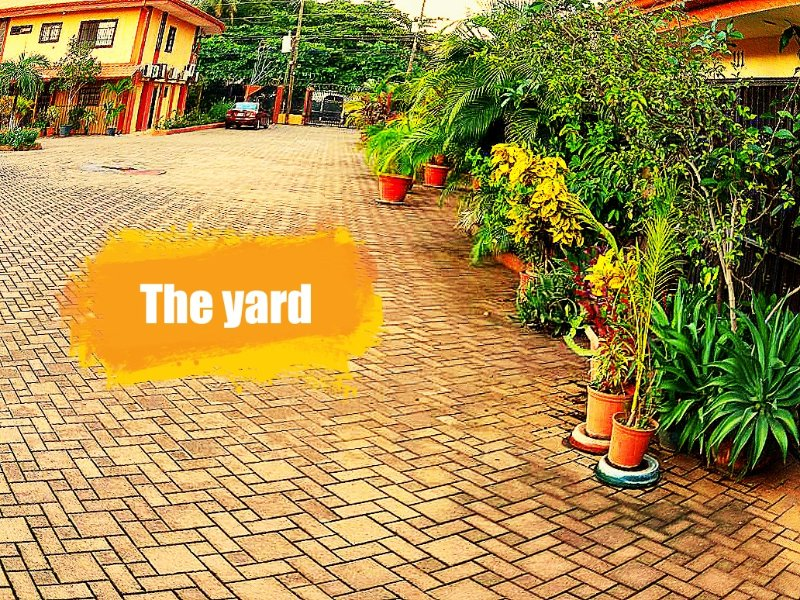 This is the yard