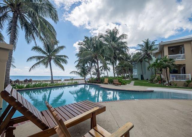 Piscina y terraza de la piscina