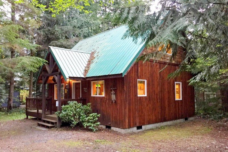 Mt Baker Rim Cabin 32 - A Cute, Private, 2-story Family Cabin, vacation rental in Glacier