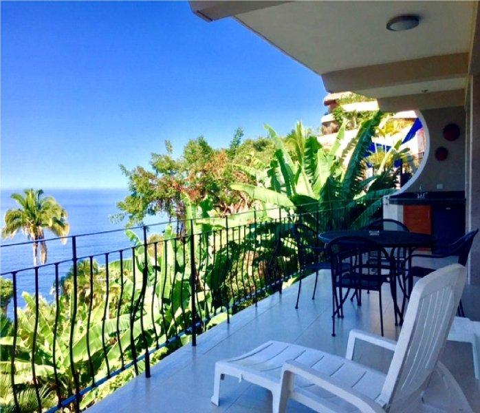 Villas Altas Mismaloya Ph B1 Dream Ocean View Puerto Vallarta, holiday rental in Cabo Corrientes