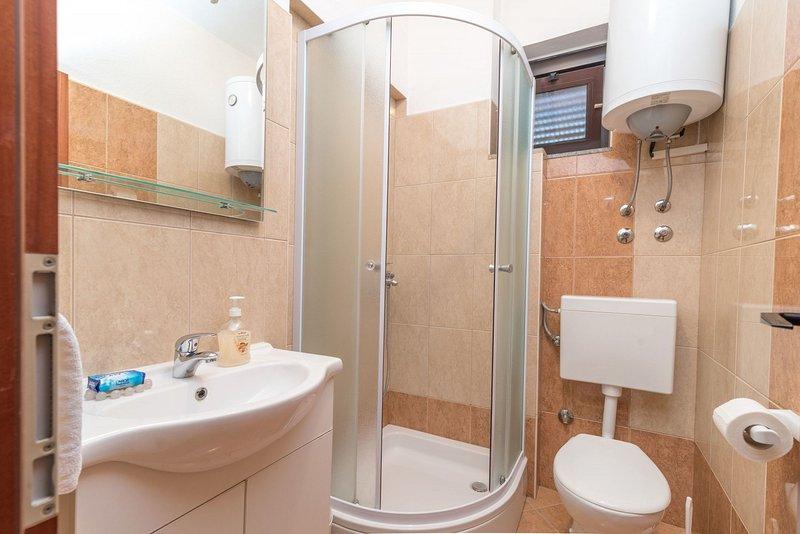A2 (2+2): bathroom with toilet