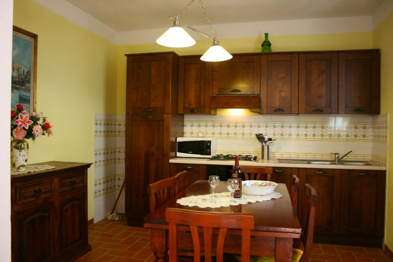 PODERE MARCIGLIANO - TORREONE, holiday rental in Camucia