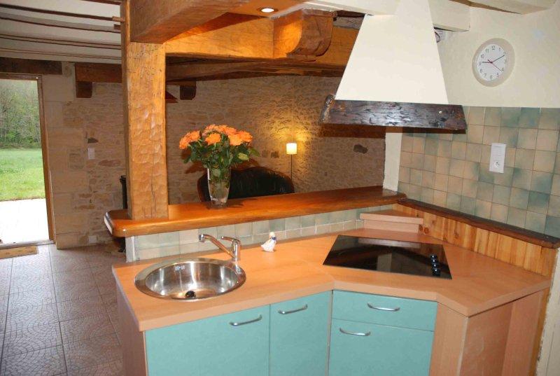 Cocina de la casa azul.
