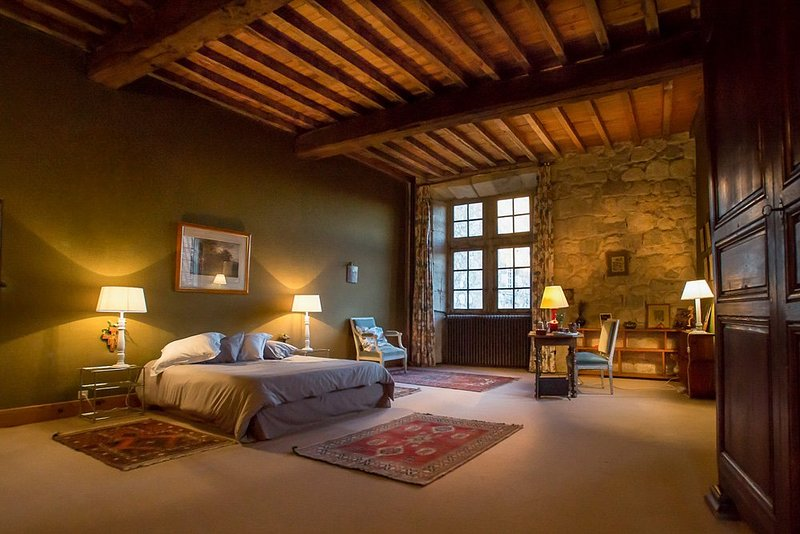 Poudenas Chateau Sleeps 24 with Pool - 5364790, vacation rental in Lannes