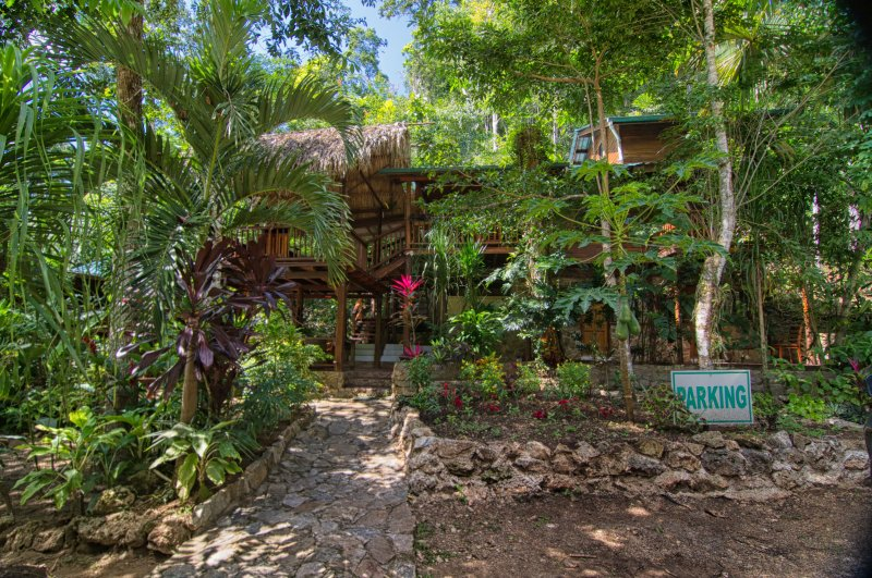 Relax in the Rainforest near Waterfalls at Better in Belize Eco Lodge, holiday rental in Cayo