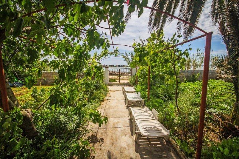 AS A3 novi(4) - Privlaka, vacation rental in Privlaka