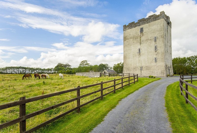 Ballyhenry Chateau Sleeps 12 - 5217596, location de vacances à Tuam