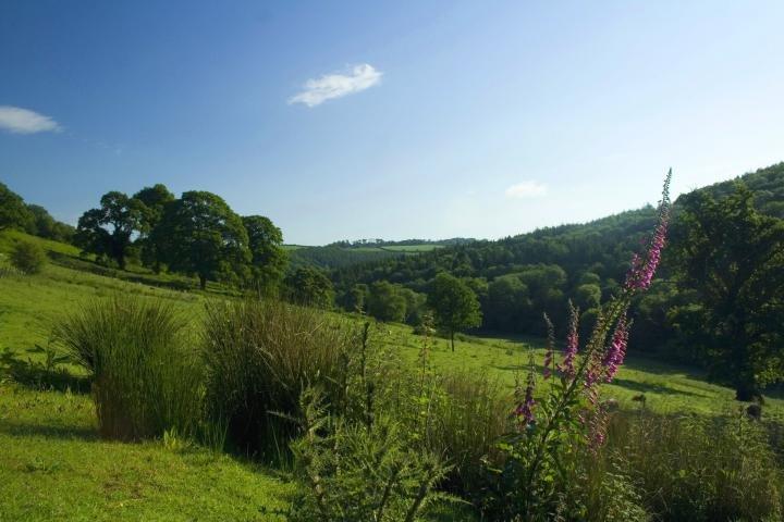 Garabridge Valley